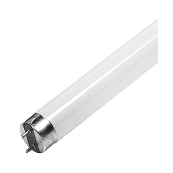 Tube fluocompact T8 - 18 W - 60 cm - blanc froid  - 736581065 - PROLIGHT