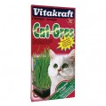 Herbe à chat - Vitakraft