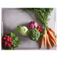Plateau Classic - 40 x 31 cm - vegetables - 515691 - Emsa