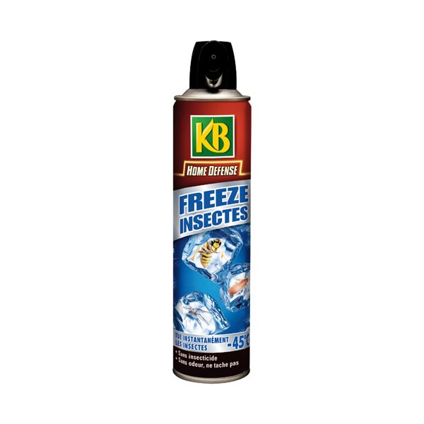 A rosol anti insectes freeze 300 ml hdfreez kb home boulevard for Peinture anti insecte