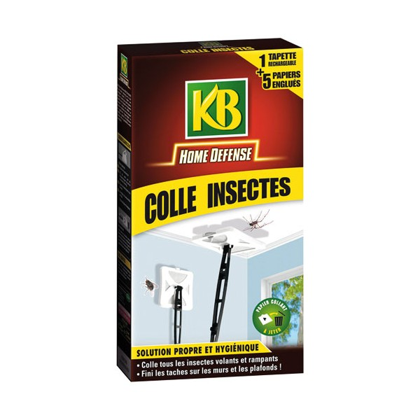 Tapette colle insectes - HDTAP - KB