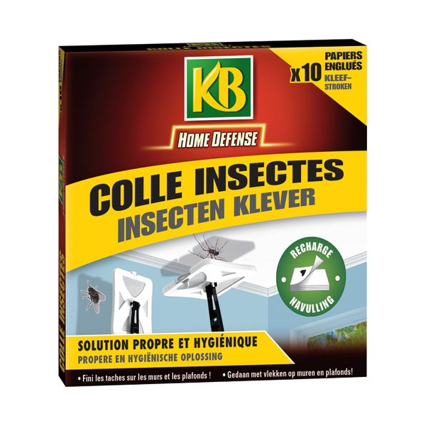 Recharge tapette colle insectes - lot de 10 - HDCOL - KB