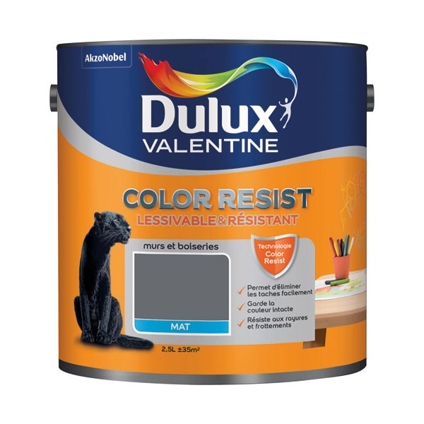 peinture mate color resist murs et boiseries charbon 5266044 dulux valentine. Black Bedroom Furniture Sets. Home Design Ideas